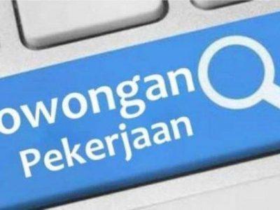 Lowongan Kerja PT Transportasi Jakarta untuk Lulusan S1,  Cek Syaratnya Di Sini!