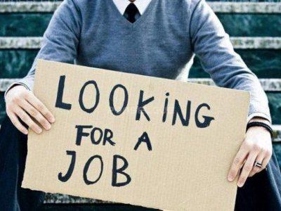 INFO LOWONGAN KERJA-BRI Butuh Karyawan dari Berbagai Jurusan, Bank Sulselbar Tawarkan Tujuh Posisi