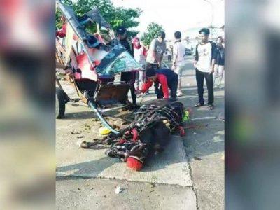 Viral Seekor Kuda Pingsan Setelah Dipaksa Kerja Seharian di Kawasan Stadion Pakansari Cibinong