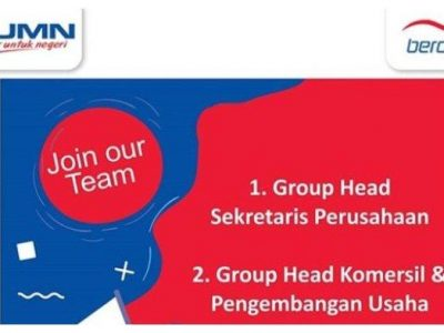 Lowongan Kerja BUMN PT Berdikari (Persero) Pendaftaran hingga 12 Juli 2019 Buruan Daftar